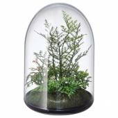 ИНВЭНДИГ Декоративный флорариум, 15 см