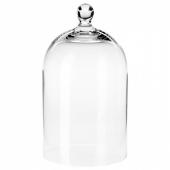 МОРГОНТИДИГ Стеклянный клош, прозрачное стекло, 25 см